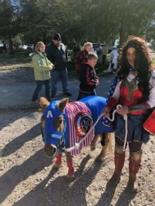 costumes for horses Capt America