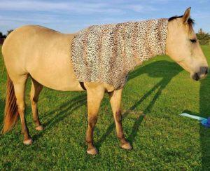 faceless sleezy in leopard