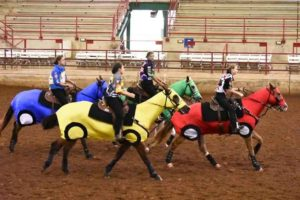 horse-costumes-race-car-3