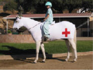 horse costume as ambulance