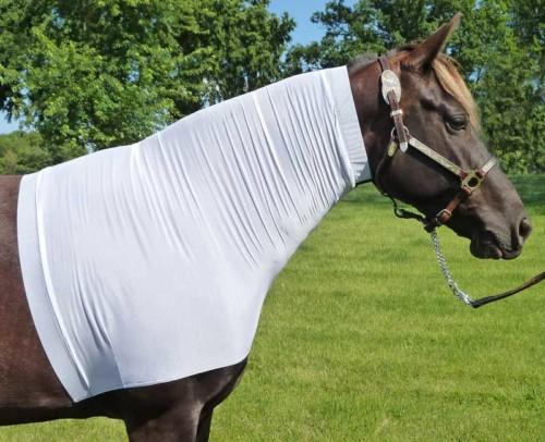 faceless sleezy