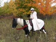 horse and princess costume