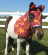 Horse costumes sleezy barb horsewear mindydevil solutioingenieria Image collections