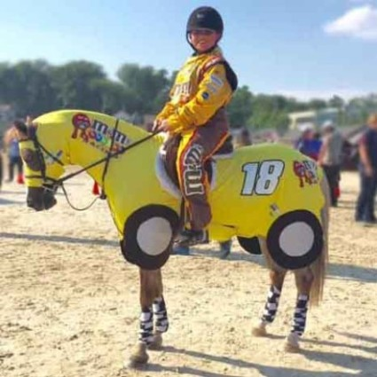 Horse costumes sleezy barb horsewear horse costumes race car 1 solutioingenieria Image collections