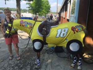 horse costume race car 4