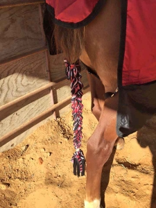braid in tail wrap in red zebra print