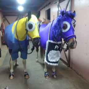 horse costumes - minion