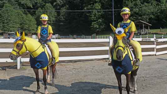 costumes for horses - Minion