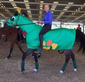 Horse Costumes | Sleezy Barb Horsewear