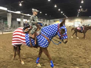 horse costumes - american flag