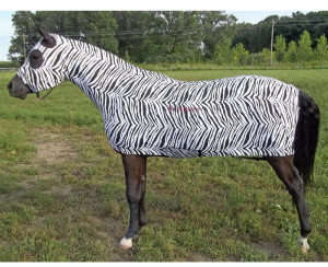 horse full body slinky