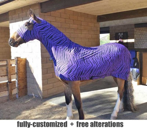 horse full body slicker