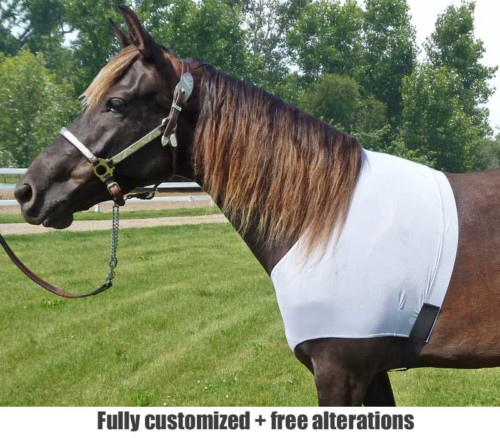 horse shoulder guard shown in white mesh for under fly sheets