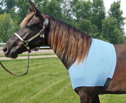 lycra shoulder guard in baby blue