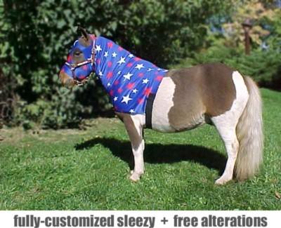miniature horse sleazy hoodie