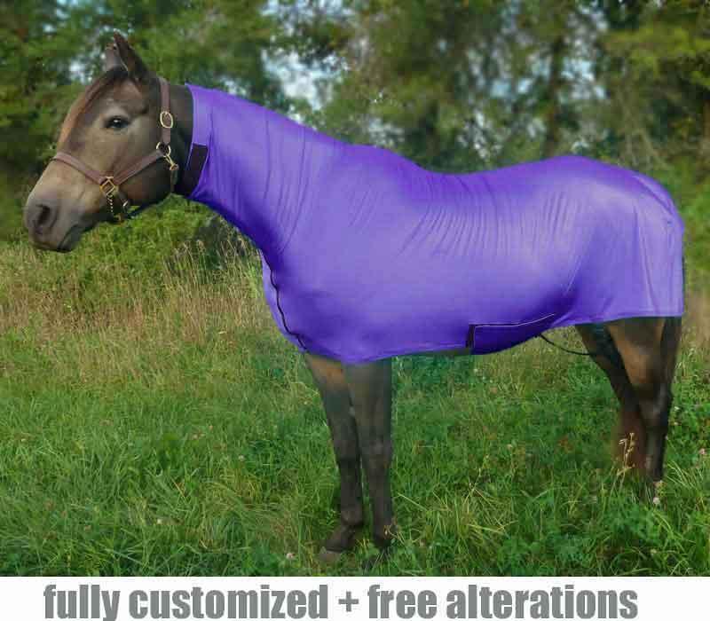 horse full body no face