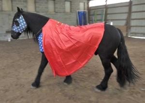 horse wearing super hero costume