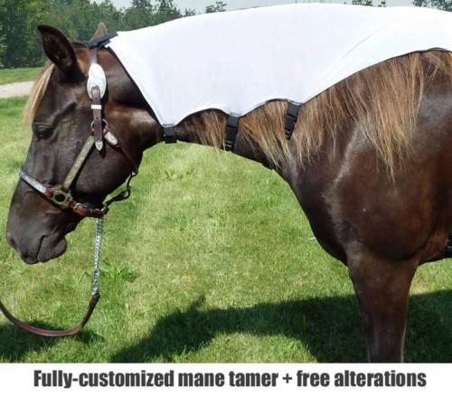 horse mane tamer brief shown in white