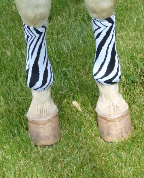 horse leg wraps in zebra print