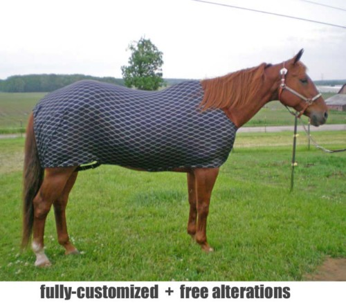horse lycra body slicker