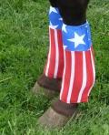 horse neoprene sport boot covers