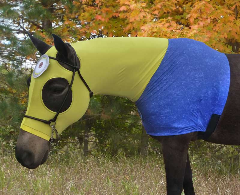 costumes for horses minion