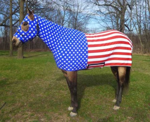Costumes for Horses American Flag