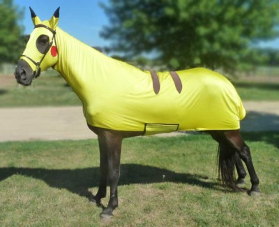 costumes for horses pokemon pikachu