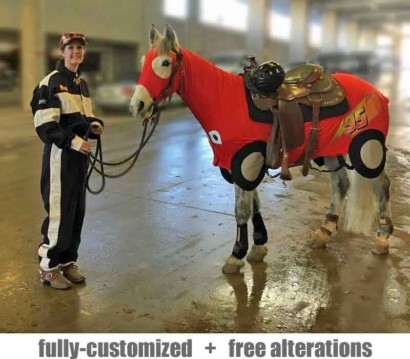 miniature horse costumes race car