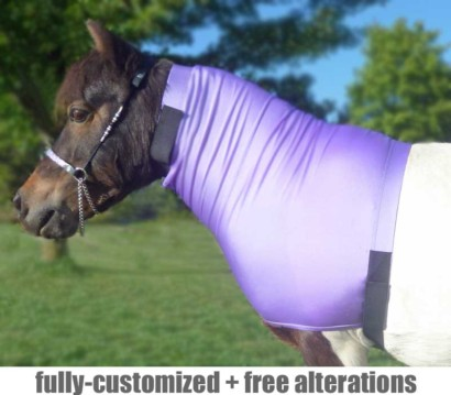 miniature horse faceless sleezy