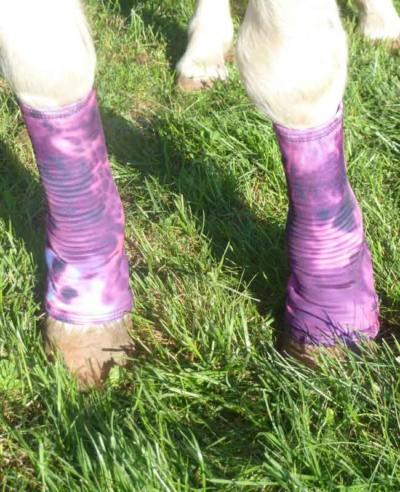 miniature horse fast leg wraps