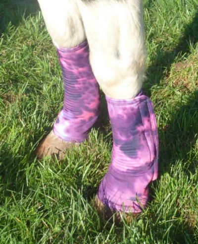 miniature horse leg wraps