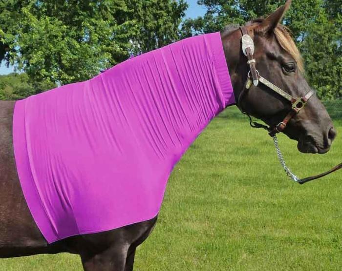 headless horse hood