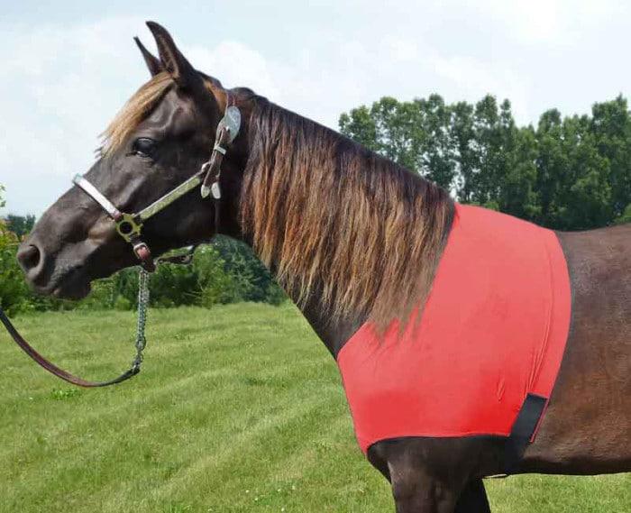 horse sleazy shoulder guard