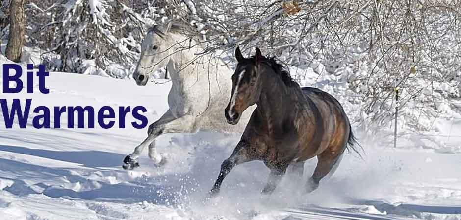 bit-warmer-for-horses