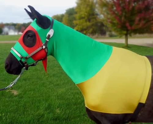 horse halloween costume ninja turtle