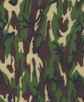 Camouflage-Army