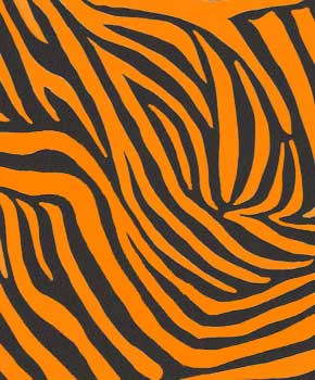 Electric Zebra-Orange