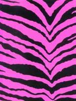 Zebra-Hot-Pink